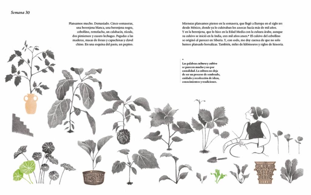Ilustración Mil Tomates Página 1