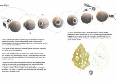 Ilustración Mil Tomates Página 2