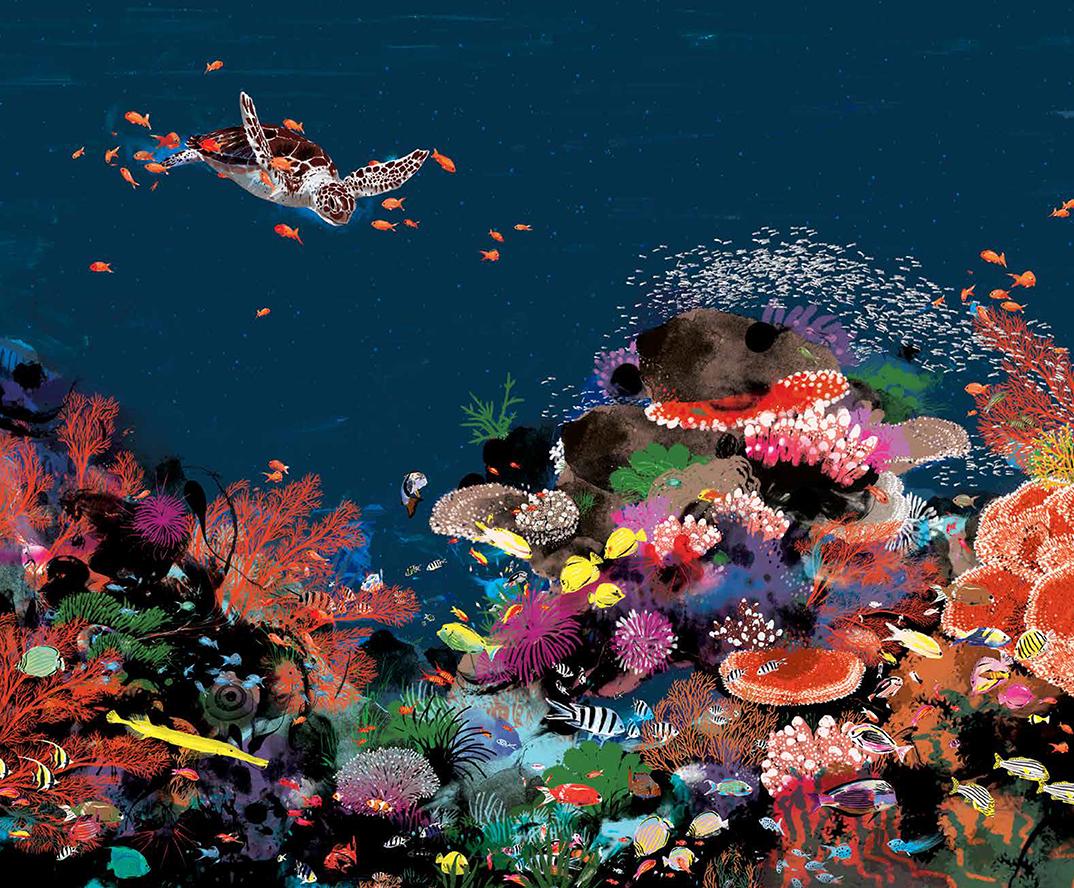 Je suis au monde - Barrera de Coral
