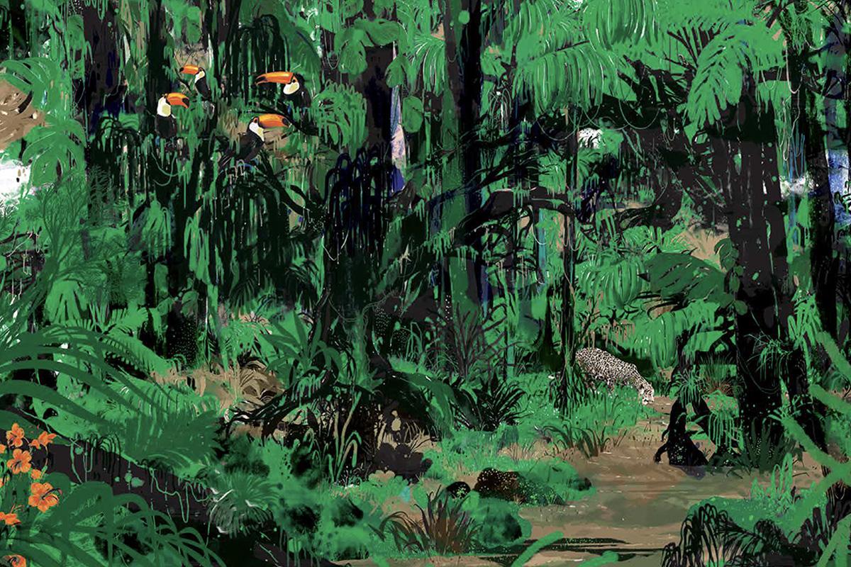 Le grand tissu du vivant + immersion dans la jungle d'Amazonie
